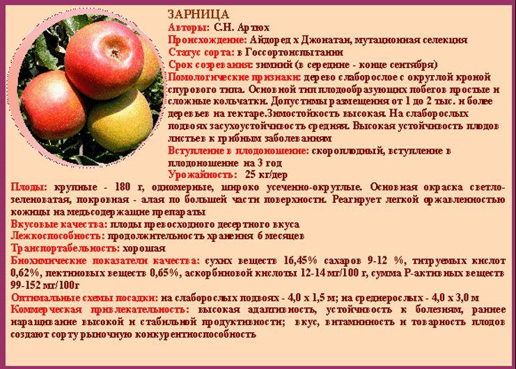 исполнением сорта яблок список по алфавиту вычислить